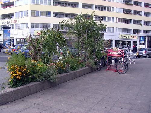Mann-o-Meter Guerrilla Garden