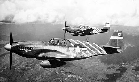Warbird picture - North American P-51 Mustang