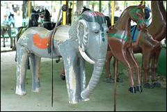 Jardin du Luxembourg - ... und dann und wann ein grauer Elefant? (sisifos) Tags: elephant paris france merrygoround rilke jardindeluxembourg daskarussell