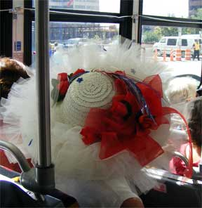 DNC hat