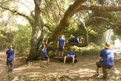 I'm never hiking with you guys again (Matthew Bohrer) Tags: blue tree nature leaves santabarbara garden botanical hiking many cloning multiplicity clone mulitple mattbohrerphotography matthewbohrerphotography