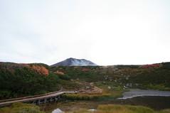 姿見駅から旭岳を見上げる