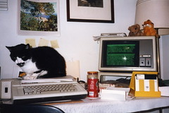 Early Cat Blogging