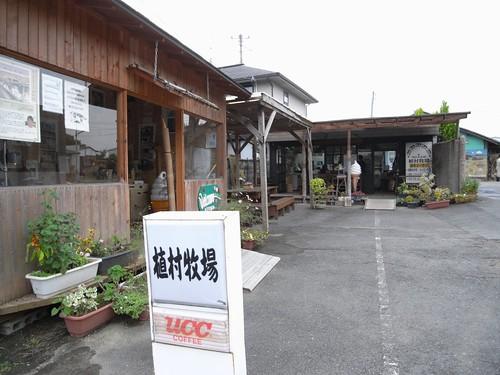 植村牧場-01