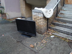 First abandoned flat screen TV I've seen