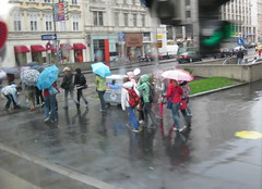 Rhine Main Danube - Wet Vienna (wonky knee) Tags: vienna wien wet grey rainy regen regenschirm rhinemaindanube parapluies colourfulumbrellas colourfulmacs