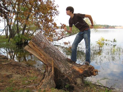 on Lookout Stump