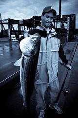 Big fish (Chris Beauchamp) Tags: bridge fish boston canon fisherman streetwalking toning selenium xti ihavenocluehowtospellmassachuessettes butiknowthatisverywrong copyrightchrisbeauchamp20072009