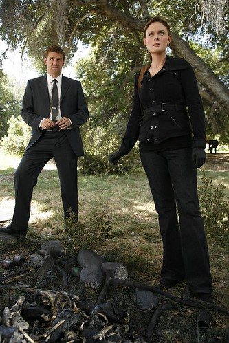 HiRes 4x11 - The Bone that Blew by Bones Picture Archive.