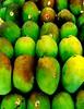Harum Manis Mangos (Blu3_Sky777) Tags: fruit yummy sweet queen mango highfive indonesian harum manis amateurs mangga buah abeauty colorphotoaward amateurshighfive invitedphotosonly
