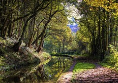 England, Derbyshire: Autumn Walk (Tim Blessed) Tags: autumn fall forest landscape countryside canal scenery singlerawtonemapped inspiks|inspirationalpictures