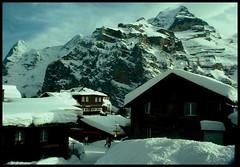 Eiger Moench Jungfrau (philwirks) Tags: new snow ski public switzerland interesting random picnik myfavs philrichards muerren show08