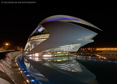 The Valencia's Opera House wearing its best clothes (Salva del Saz) Tags: city santiago espaa house reflection valencia architecture modern night eos noche reina spain arquitectura opera long exposure angle sofia wide arts ciudad calatrava reflejo gran cac angular artes 1022mm dri palau sciences moderna 1022 exposicion larga palacio ciencias dynamicrangeincrease efs1022 40d salvadordelsaz salvadelsaz