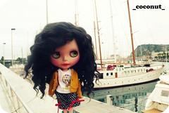 Coco en el puerto