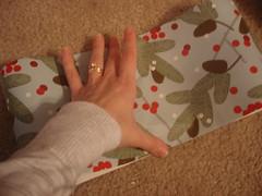 3093929827 3ecf6c82ac m A Gift Wrap Bow Tutorial