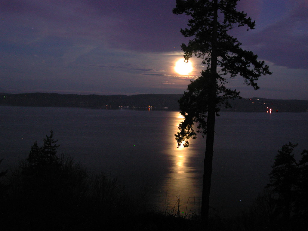 Moonsetting Over Whidbey