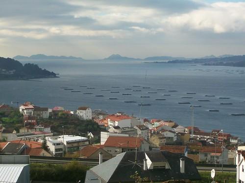 Rias gallegas de Vigo