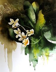 Plumeria (tamishvat) Tags: art israel sketch paintings drawings watercolors tami markers aquarell shvat almostanything yourmasterpaintings tamishvat loveartflowers kunstplatzlinternational