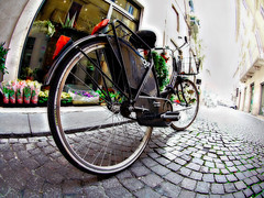 Ricci's suffering (Sator Arepo) Tags: street leica bike bicycle wheel movie point vanishingpoint reflex spokes perspective fisheye cobblestones verona paving 8mm vanishing zuiko orton digilux pavingstones digilux3 8mmed misionfz080212 zd8mmfish35