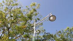 22.日月潧??湖公路的路燈