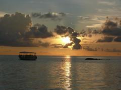 Maafushivaru (easyrab) Tags: ocean sunset sea fish birds animals star photo tramonto sub uccelli reef maldives maldive barriera corallina maafushivaru easyrab easrabs easywom