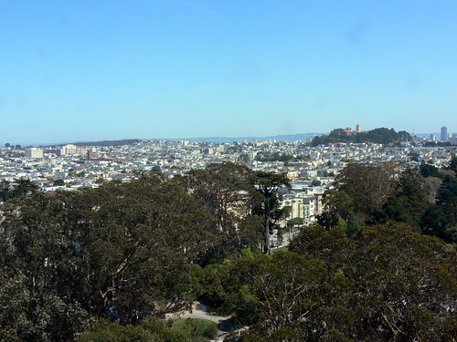 The view from the De Young Museum Tower