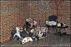 """""""EL OTRO TURISMO"""" (ABUELA PINOCHO ) Tags: españa calle granada perros rincon bestinshow personaje pinocho extraño robado bozales superlativas a3b jaipasbu turistaomendigo mezcladesentimientos"""