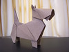 Scottish Terrier - Peterpaul Forcher