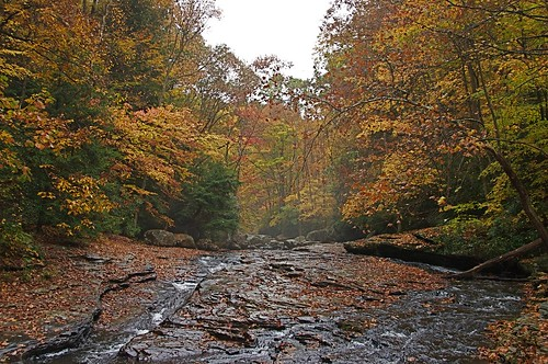 Meadow Run at Ohiopyle SP