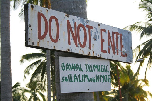 Don't stop under a coconut tree