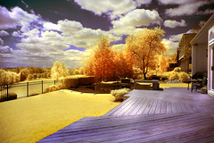 infrared landscape (artist angelo) Tags: trees light sky color art nature clouds ir nikon deck infrared infraredlandscape