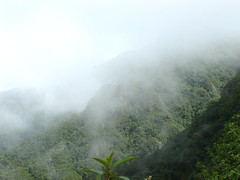 Foggy day in the mountain (sebtundis) Tags: day foggy fansipan