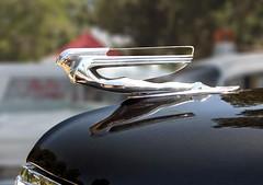 Cadillac hood ornament on a 1938 LaSalle sedan (Ate Up With Motor) Tags: sedan la 1938 cadillac vannuys lasalle hoodornaments hoodornament carshow trunkback allgmvehicleshow