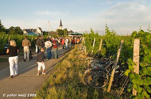 Hochheim_DSC4063_a