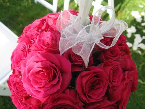 hot pink rose petals. Hot pink rose pomanders will
