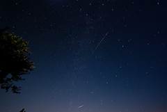 IMGP-6391 Perseid meteor shower (Bob West) Tags: longexposure nightphotography ontario beach night nightshots startrails sigma1020mm perseidmeteorshower southwestontario bobwest k10d noisereductionoff