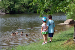 feeding the ducks (Poopshe_Bear) Tags: boy summer vacation lake water girl swimming swim duck pond sister brother ducks mallard