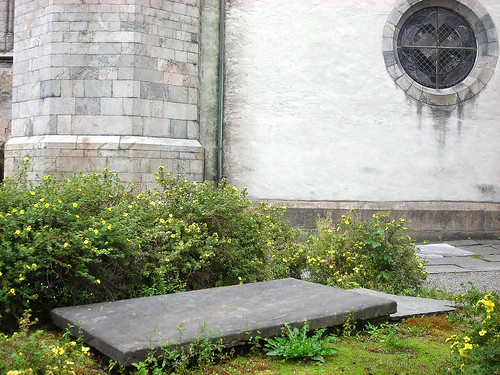 Potentilla around tomb, Domkirke