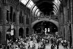Saturday morning at the museum (manypixors) Tags: blackandwhite building london museum architecture nikon dinosaur handheld naturalhistorymuseum 1870mm diplodocus blueribbonwinner f3545 alfredwaterhouse passionphotography hyperfocaldistance d40x francisfowke bwartaward reflectyourworld
