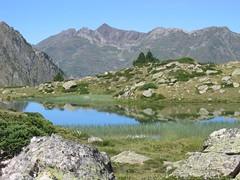 Lac Blanc, Hautes-Pyrnes, France (chakchouka) Tags: mountain lake france reflection reeds pyrnes lacdoncet leuropepittoresque