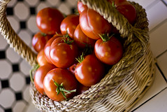 Tomatoes! (ladyhawker) Tags: red yum pentax sweet tomatoes naturallight blogged homegrown k100d utahphotographer wwwwholegrainphotographynet
