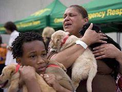 Kinship Circle - 2008-09-10 - Animal Evacuations In A Post-Katrina World 08