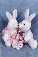 Casal de Coelhos - G02 (Moldes videocurso artesanato) Tags: de casal coelhos g02