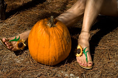 Indian Summer (dart5150) Tags: orange fall feet me pumpkin cupcakes us shoes toes autum legs sunflowers ok cubism