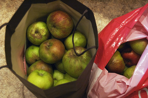 10lbs of bramleys and a bag of windfalls