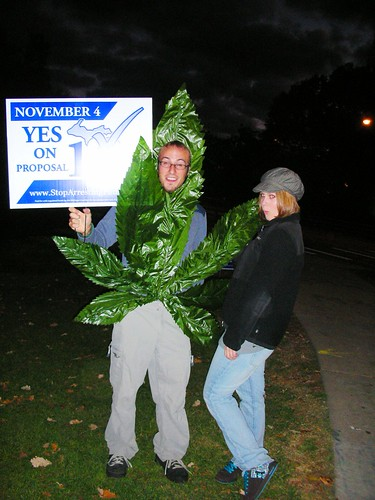 2948768150 c8d70e0f3a November 2, 2010 California Election: Proposition 19, Legalization of Marijuana