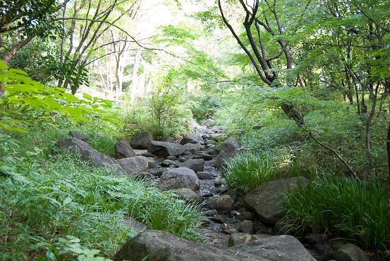 kitanomura park_0142