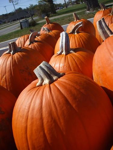 pumpkin stand 004