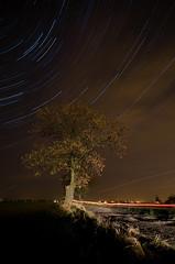 *** (loki_p) Tags: road longexposure trees sky tree night stars piotr nikon nightscape poland torun startrails d300 toru lokip potpa piotrpotpa piotrpotepa potepa