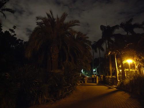 你拍攝的 37植物園的夜。